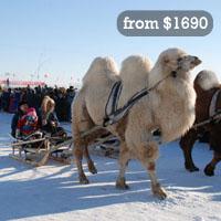 Mongolia event tours