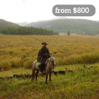 Adventure tours Mongolia