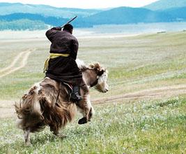 Mongolian yak event